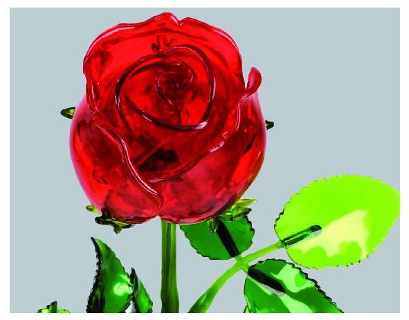 rose blanche transparente pour la saint valentin deco de vitrine rose blanche. Black Bedroom Furniture Sets. Home Design Ideas