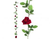 Guirlandes de roses