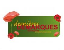 Sticker DERNIERES 12 ETE