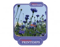 Sticker PRINTEMPS 02